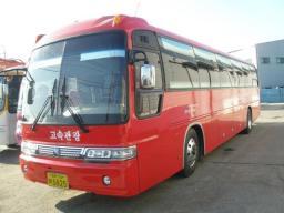 туристический автобус Kia Granbird, 2008г