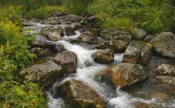 Экологическая паспортизация природопользователей