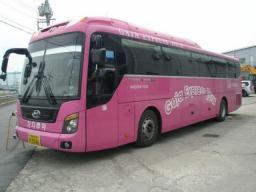 автобус туристический Hyundai Universe 2008 г.