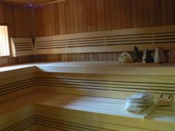 От веника до печной трубы: строим и ремонтируем баню