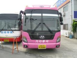Туристический автобус Hyundai Universe Luxury, 2008 год