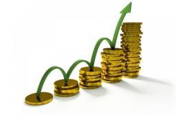 Инвестиционный проект по скупке акций