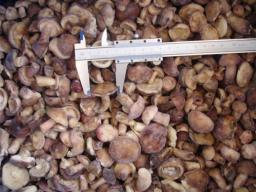 маслята замороженные целые 1 сорт, 2-4 см