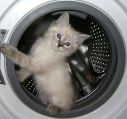 Ремонт стиральных машин в Челябинске.