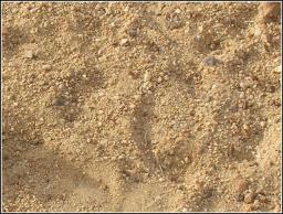 Песчано-гравийная смесь Новосибирск