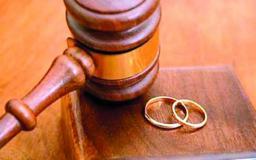 Консультации и судебная защита