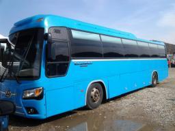 Туристический автобус Kia Granbird Sunshine, 2010г