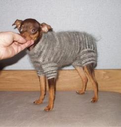 Вязание спицами одежды для собак.