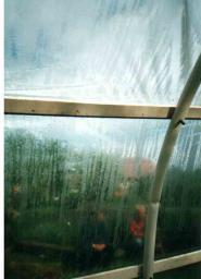 Тепличная и парниковая прозрачная плёнка «Росток»