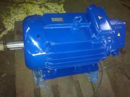 MTF111-6(3.5/925)IM 1001 Крановый электродвигатель