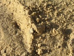 Песок долгопрудный