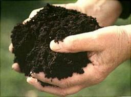 Земля плодородная Торф Дрова Грунт плодородный Песок Щебень Навоз конский Навоз коровий Асфальтовая крошка