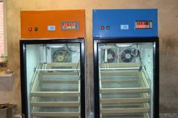 Инкубатор на 770 куриных яиц.