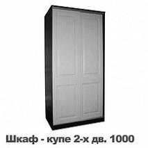 Шкаф-купе 1000