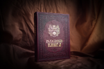 Родословная книга Художественная БОРДО (24,5х31,5х5см)