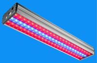 Тепличные светодиодные светильники серии