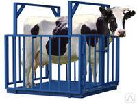 Весы платформенные для взвешивания животных с ограждением ВСП4-ЖСО