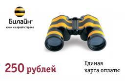 Единая карта оплаты 250р. Билайн / Новосибирск