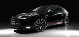 Аэродинамический комплект Wald для Lexus NX 200 Т