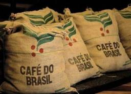 Зеленый кофе в зернах (нефасованный)