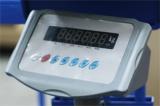 Весы платформенные для взвешивания животных с ограждением ВСП4-1000ЖcО