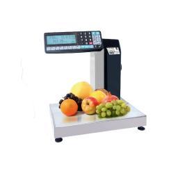 MK-R2L10-1 весы-регистраторы с функцией печати этикеток и двухсторонней индикацией