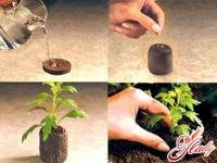 Торфяные (Торфо- перегнойные) таблетки Джиффи, 24 мм,2000шт/кор