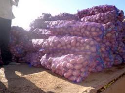 Картофель оптом калибр 5-9 от 20т от 7,5руб
