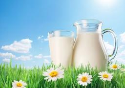 Молоко Российских и Белорусских производителей