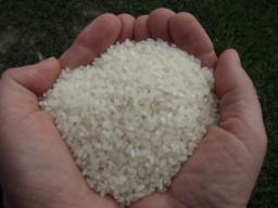 Кубанский рис от производителя. ГОСТ и ТУ, 1 сорт.