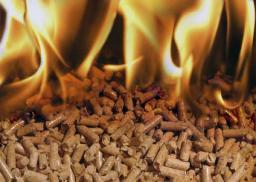 ПЕЛЛЕТЫ топливные гранулы Производим!!!