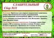 Сбор №31 СЛАБИТЕЛЬНЫЙ