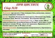 Сбор №38 ПРИ ЦИСТИТЕ