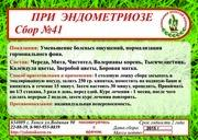 Сбор №41 ПРИ ЭНДОМЕТРИОЗ