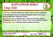 Сбор №46 БАРХАТНАЯ КОЖА