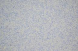 Шёлковая штукатурка Silk Plaster серии Оптима Г-057