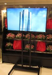 Аренда, прокат плазменной панели в Томске 50 дюймов THOMSON T50E10DHU