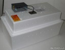 Инкубатор Несушка БИ-2(м) на 77 яиц (U=220В цифр.терм.) авт. поворот № 59