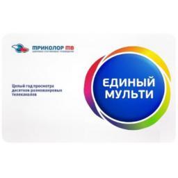 """Карта оплаты """"Единый Мульти"""" на 2 ТВ"""