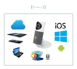 Видеоняня /WiFi видеокамера CleverDog с DVR