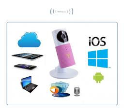 Видеоняня /WiFi видеокамера CleverDog Rose с DVR
