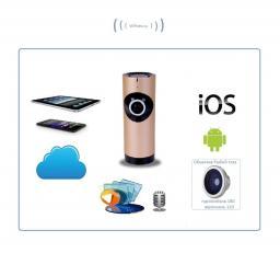 Видеоняня /WiFi IP видеокамера панорамная 180*110*  с DVR (fishR), HD