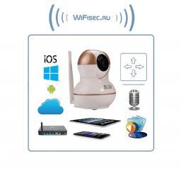BW. Видеоняня /WiFi-LAN видеокамера моторизированная с DVR , HD