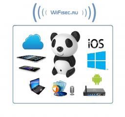 Видеоняня WiFi-LAN видеокамера с DVR (Panda), HD