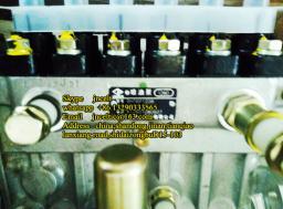 Топливный насос высокого давления двигателя Weichai-Steyr WD615, WD10 612601080607