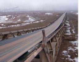 Морозостойкая конвейерная лента Cold Resistant Conveyor Belt
