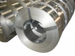 Лента стальная холоднокатаная ТС 14-176-6-2006