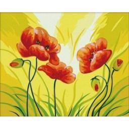 Раскраска Красные маки, 60x80