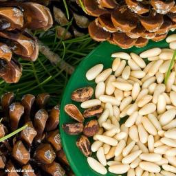 Кедровый орех очищенный сырой