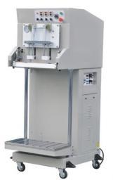 Вакуумный упаковщик (автомат) DZQ-600L (крашеный металл)